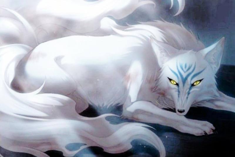 Hồ ly chín đuôi linh vật có thật hay chỉ là trong truyền thuyết (ảnh nguồn internet)